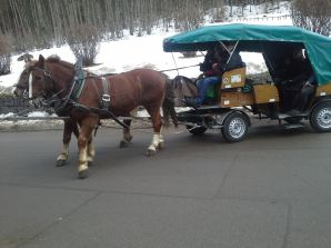 The bus road was closed due to ice, so a horse-drawn carriage was the only way to get to the castle (other than walking)
