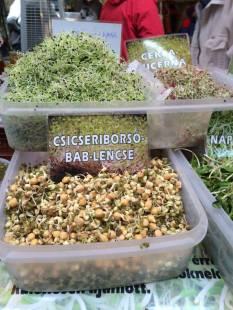 Sprouts of various varieties at the Szimpla farmers' market