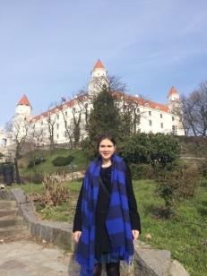 The Bratislava Castle