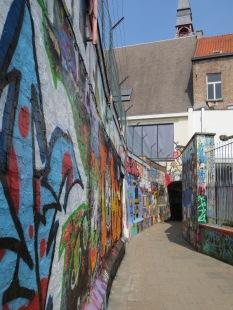 A grafitti lane (where grafitti is permitted)