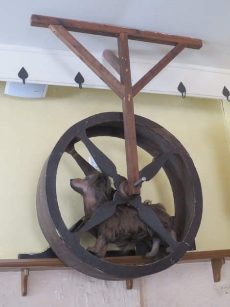 A dog-wheel to turn the spit in the kitchen